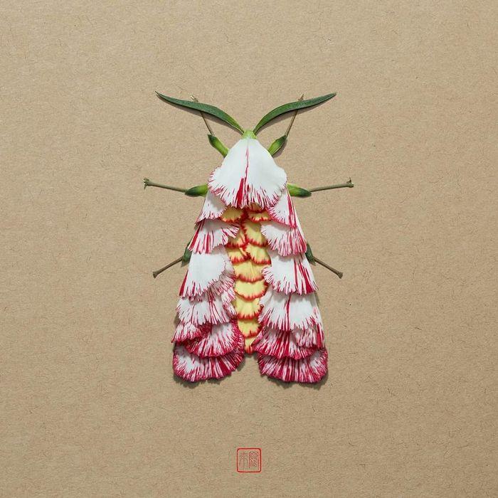 37 retratos delicados de animais criados a partir de coisas encontradas na natureza por Raku Inoue 32