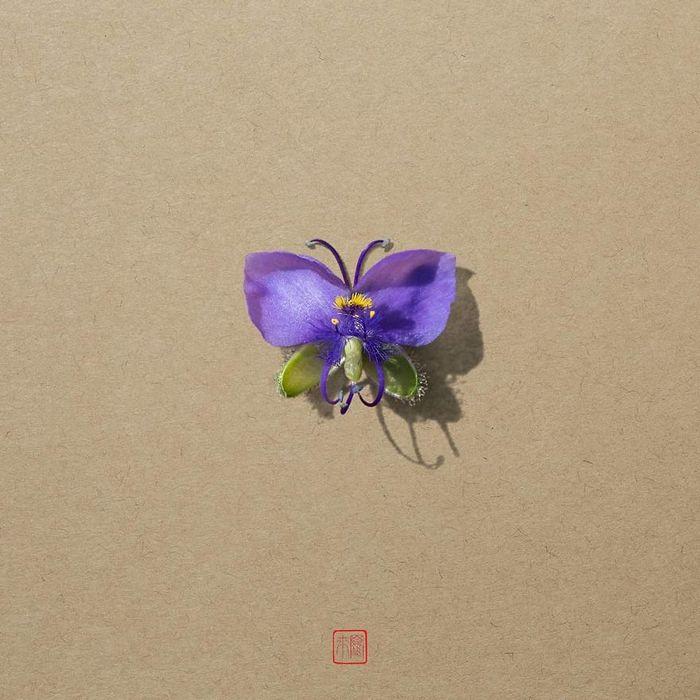 37 retratos delicados de animais criados a partir de coisas encontradas na natureza por Raku Inoue 34