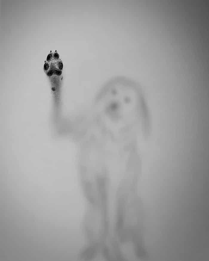 Artista cria desenhos assombrosos que parecem ter vindo do além (28 fotos) 8