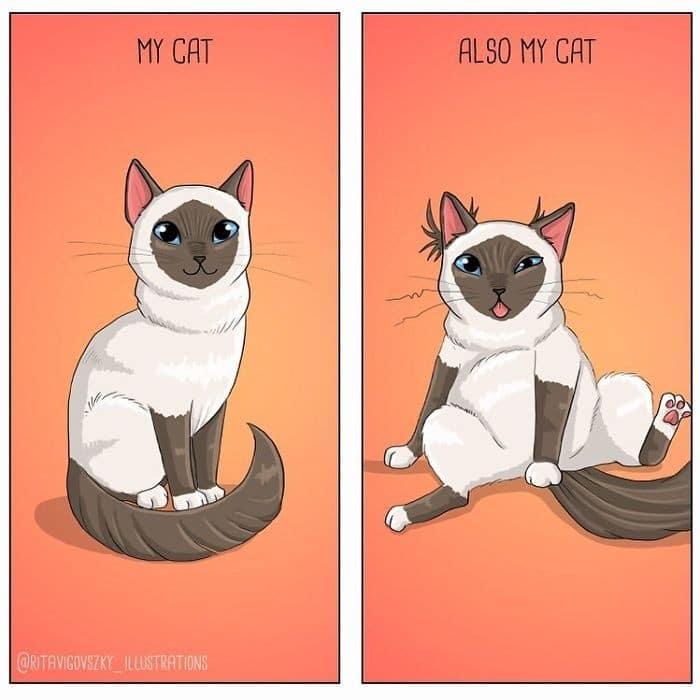 Artista ilustra a vida cotidiana com um gato nesses 31 quadrinhos 19