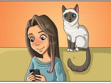 Artista ilustra a vida cotidiana com um gato nesses 31 quadrinhos 2