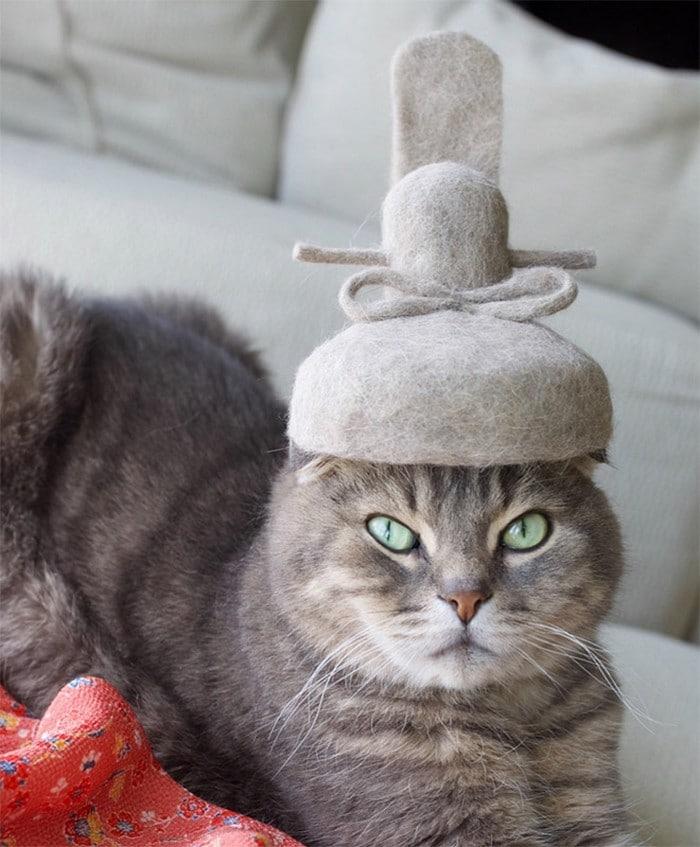 21 gatos usando chapéus feitos com seus próprios pelos 5