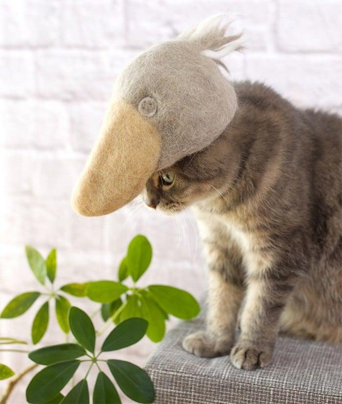 21 gatos usando chapéus feitos com seus próprios pelos 9