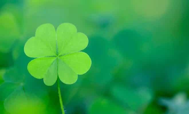 12 passos para ter sorte