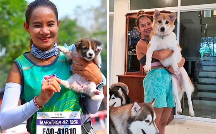 28 fotos de animais de estimação de resgate mais saudáveis do mês de maio 2