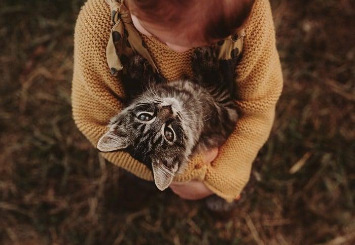 32 momentos mais inocentes da crianças com animais 4