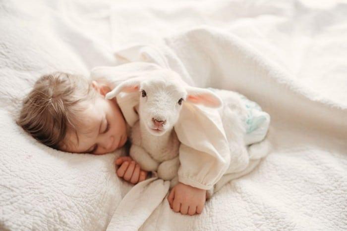 32 momentos mais inocentes da crianças com animais 32