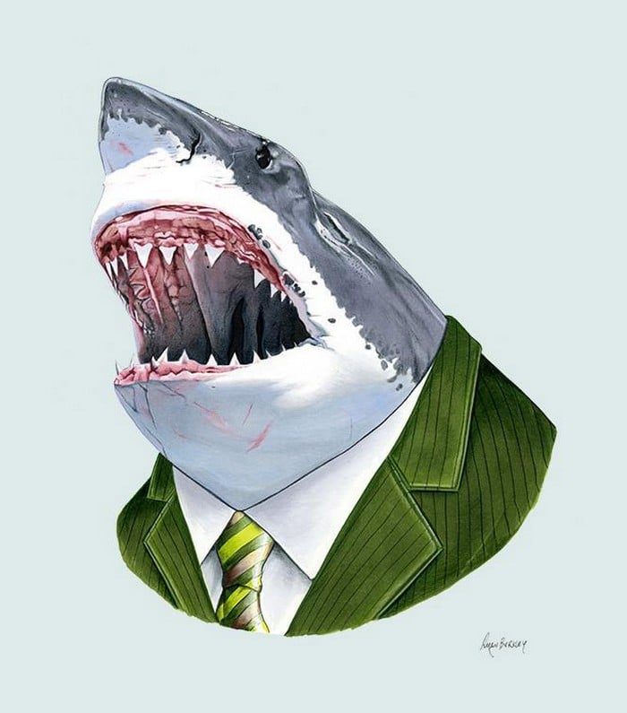20 retratos de animais muito bem vestidos por Ryan Berkley 3