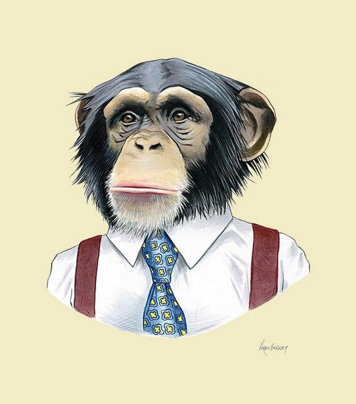 20 retratos de animais muito bem vestidos por Ryan Berkley 16