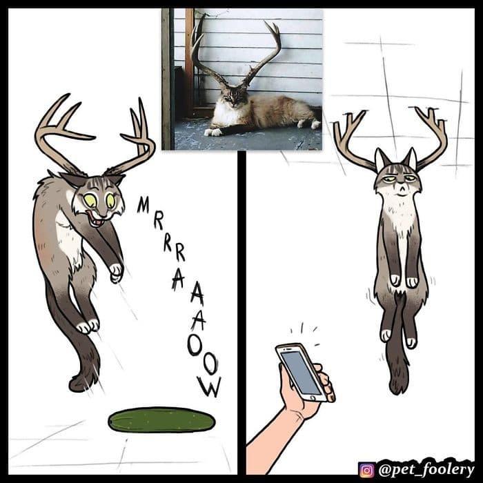 Autor reimagina os animais a partir de fotos engraçadas virais (6 fotos) 4