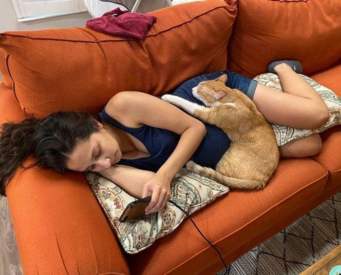 21 animais de estimação que presentearam seus donos com a melhor coisa do mundo, amor incondicional 4
