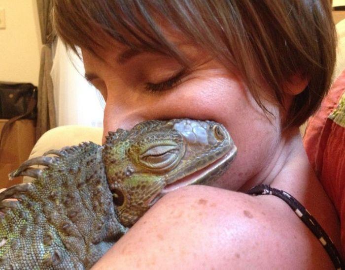 21 animais de estimação que presentearam seus donos com a melhor coisa do mundo, amor incondicional 7