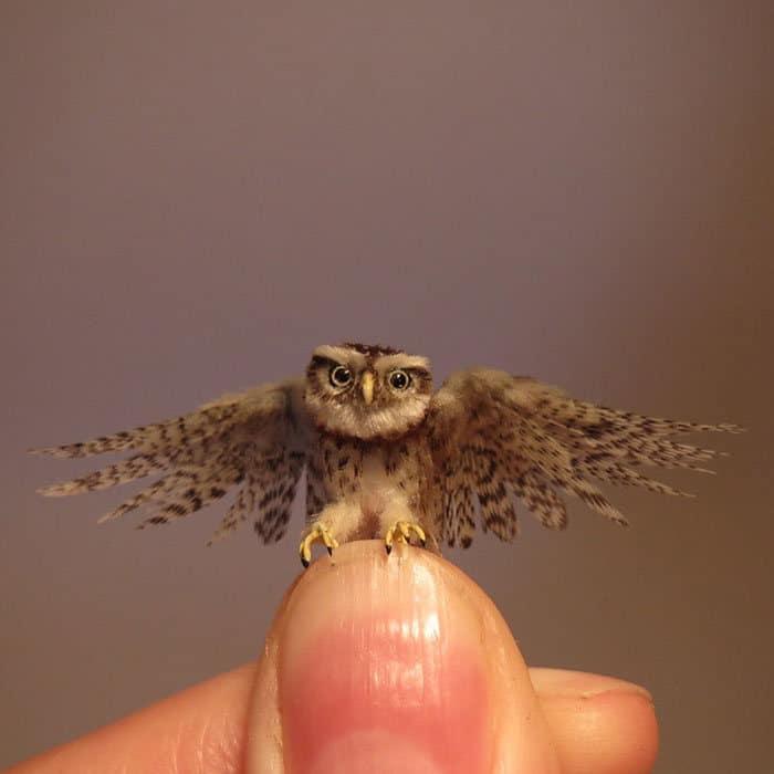40 animais em miniatura criados pelo renomado artista Fanni Sandor 15