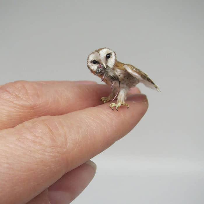 40 animais em miniatura criados pelo renomado artista Fanni Sandor 29