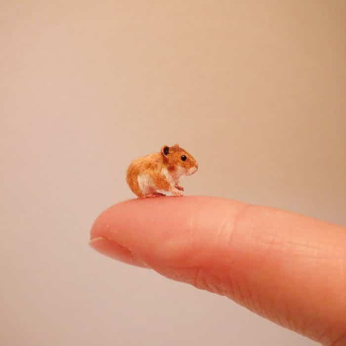 40 animais em miniatura criados pelo renomado artista Fanni Sandor 40
