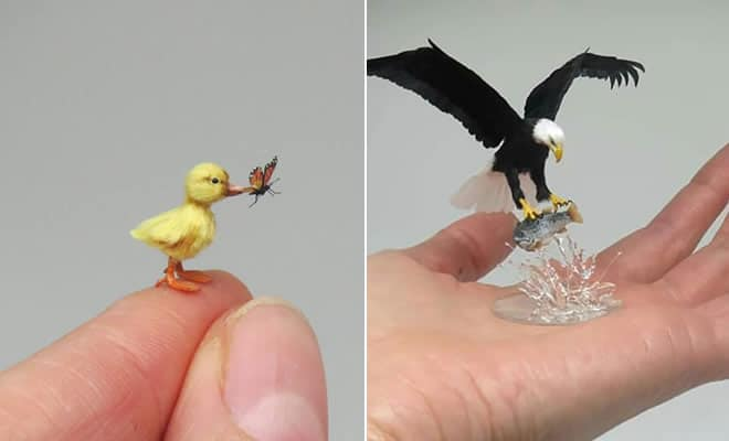 40 animais em miniatura criados pelo renomado artista Fanni Sandor 2