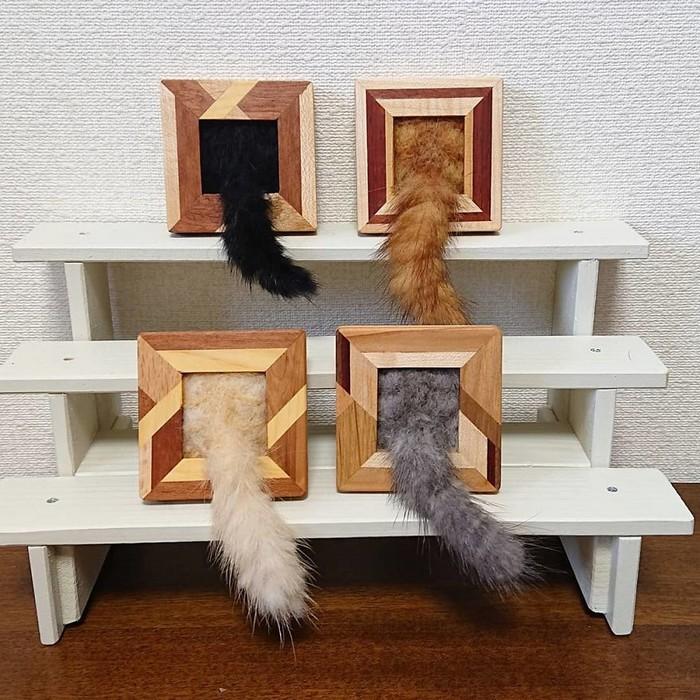 Artista japonesa cria retratos ultrarrealistas de gatos (34 fotos) 20