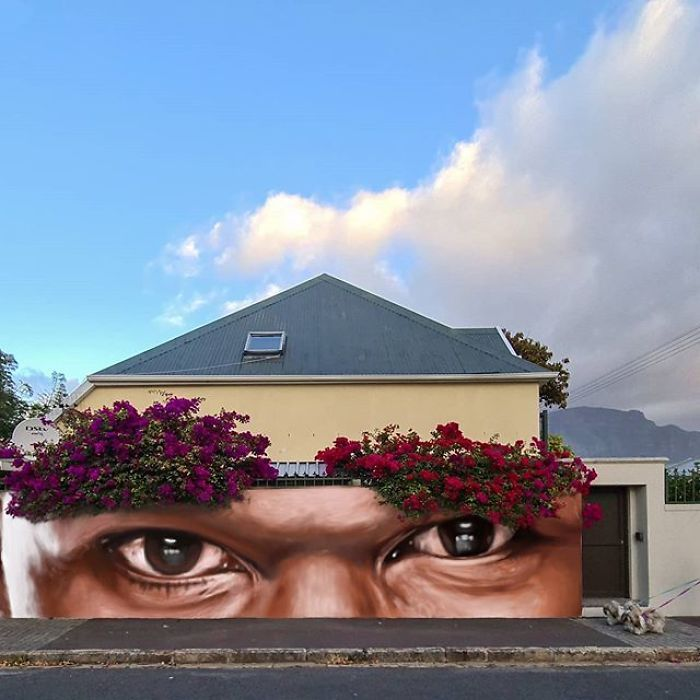 Artista sul-africano pinta grafites incríveis que interagem com o ambiente (32 fotos) 19