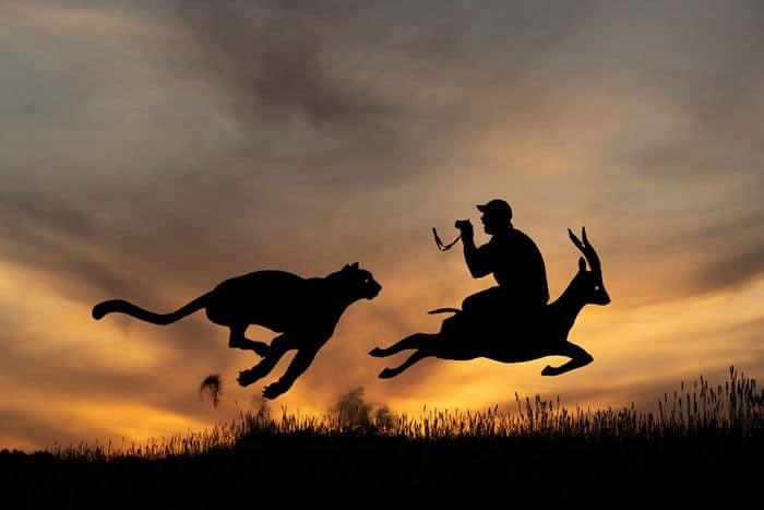 Este artista recorta papelão para criar obras mágicas ao pôr do sol 28