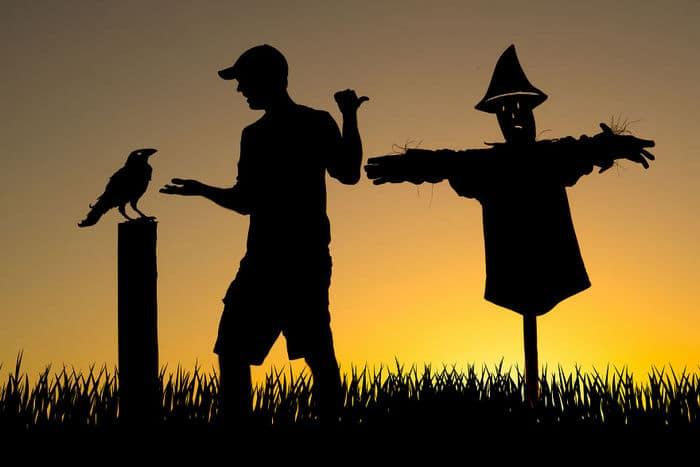 Este artista recorta papelão para criar obras mágicas ao pôr do sol 29