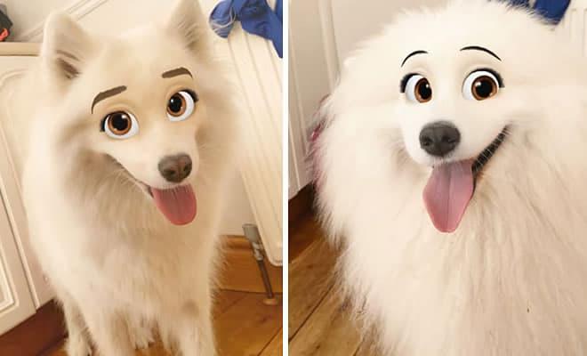 Este novo filtro Snapchat faz seu cachorro parecer um personagem da Disney (30 fotos) 33