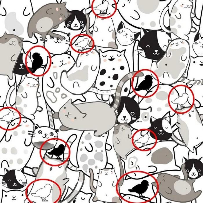 Quantos pássaros você consegue encontrar na imagem? 3