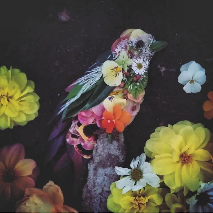 Artista usa coisas que encontra nas florestas para criar lindas mandalas de pássaros 2