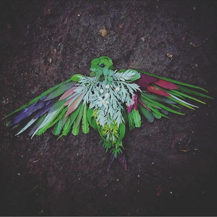 Artista usa coisas que encontra nas florestas para criar lindas mandalas de pássaros 3