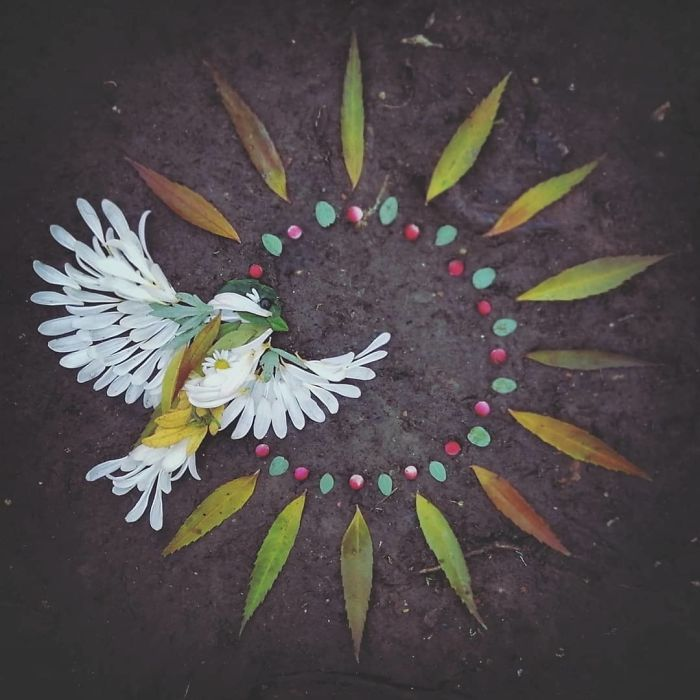 Artista usa coisas que encontra nas florestas para criar lindas mandalas de pássaros 6