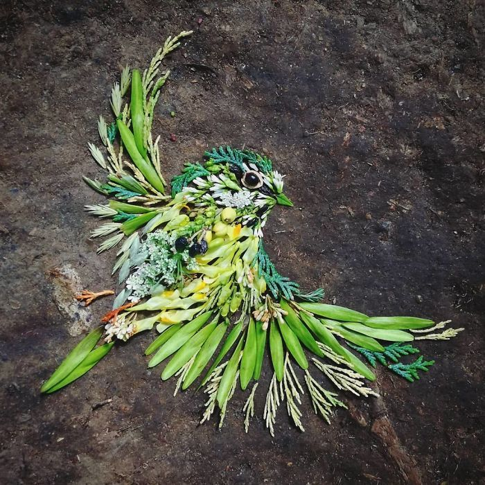 Artista usa coisas que encontra nas florestas para criar lindas mandalas de pássaros 13