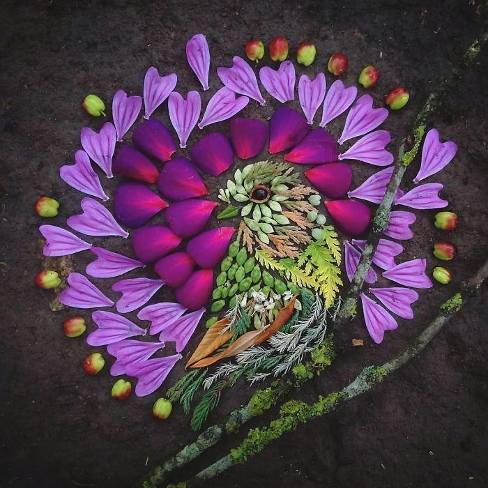 Artista usa coisas que encontra nas florestas para criar lindas mandalas de pássaros 14