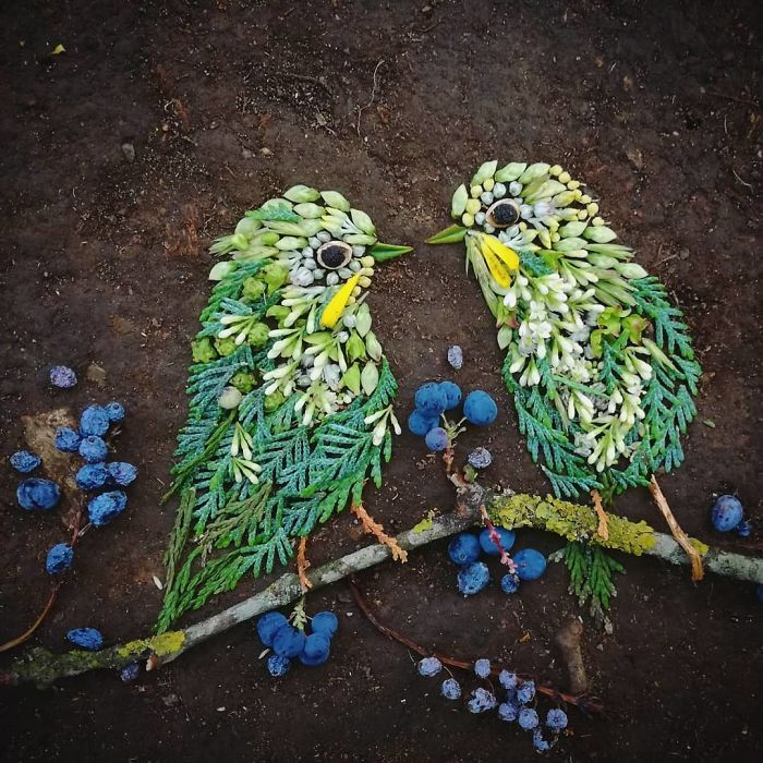 Artista usa coisas que encontra nas florestas para criar lindas mandalas de pássaros 18