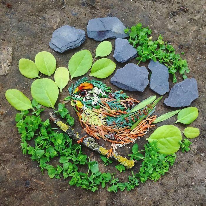 Artista usa coisas que encontra nas florestas para criar lindas mandalas de pássaros 22