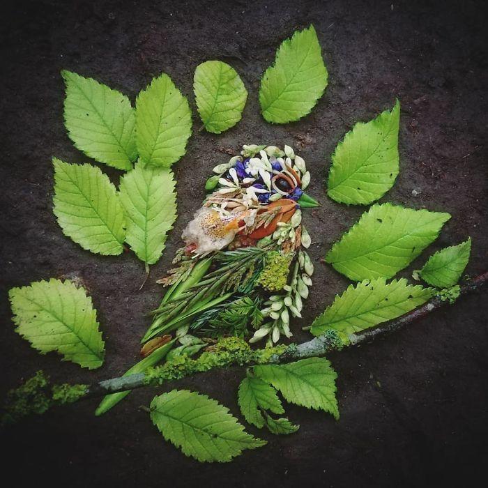 Artista usa coisas que encontra nas florestas para criar lindas mandalas de pássaros 23