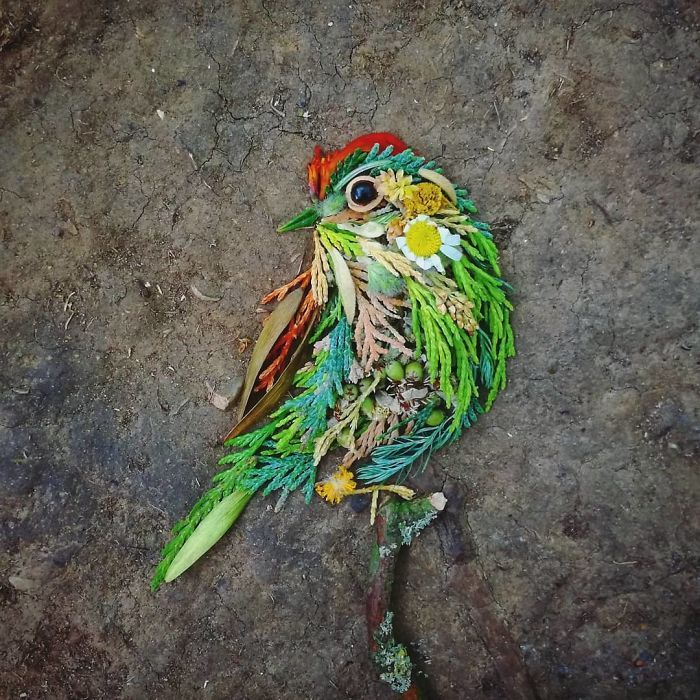 Artista usa coisas que encontra nas florestas para criar lindas mandalas de pássaros 26