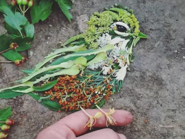 Artista usa coisas que encontra nas florestas para criar lindas mandalas de pássaros 25