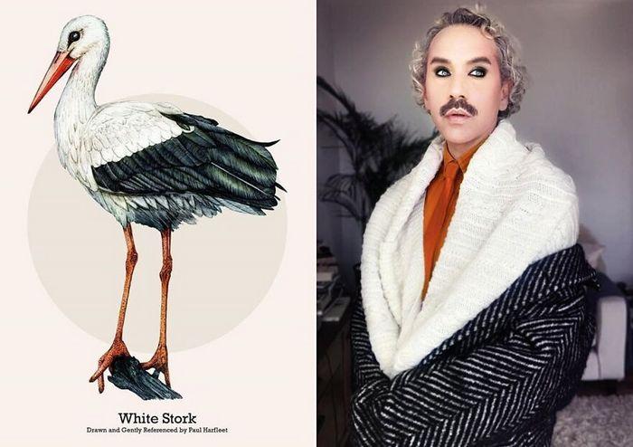 Eu crio estes looks de moda e maquiagem inspirados nos pássaros que desenho 4