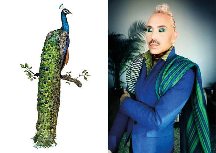 Eu crio estes looks de moda e maquiagem inspirados nos pássaros que desenho 5