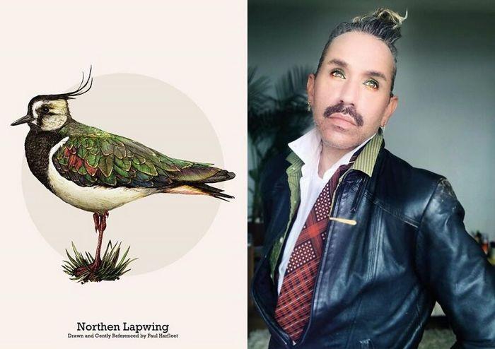 Eu crio estes looks de moda e maquiagem inspirados nos pássaros que desenho 21