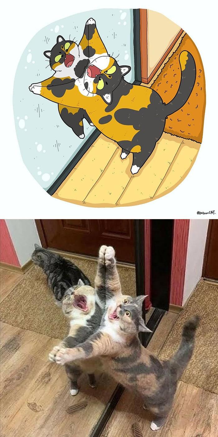 38 fotos de gatos mais engraçadas e famosas da Internet são ilustradas pela Tactooncat 2