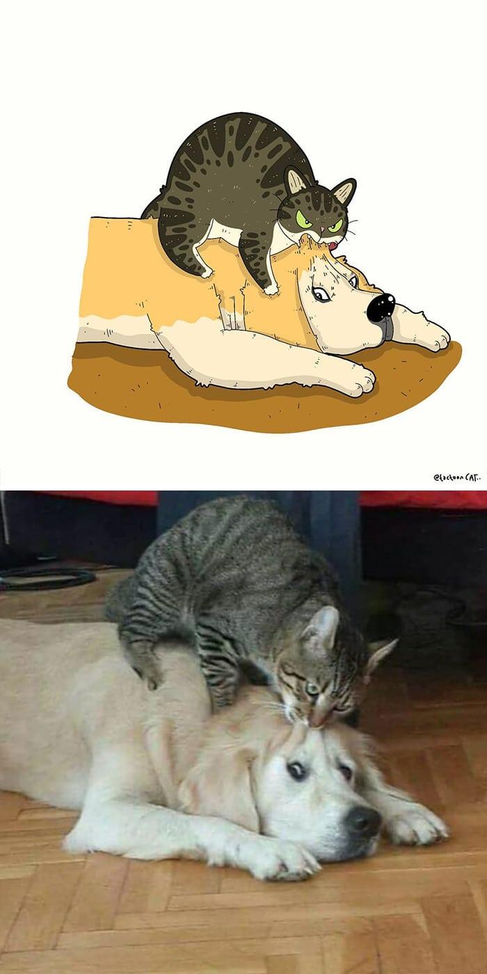 38 fotos de gatos mais engraçadas e famosas da Internet são ilustradas pela Tactooncat 4