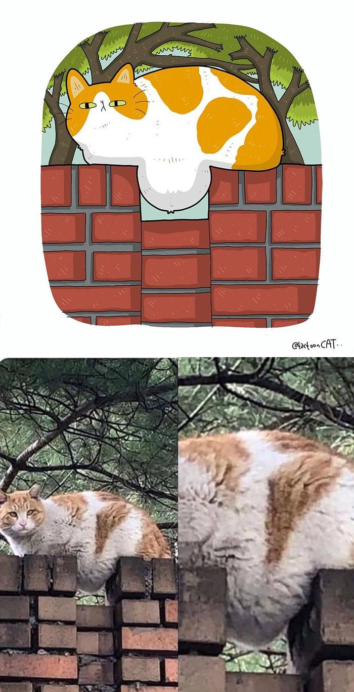 38 fotos de gatos mais engraçadas e famosas da Internet são ilustradas pela Tactooncat 5