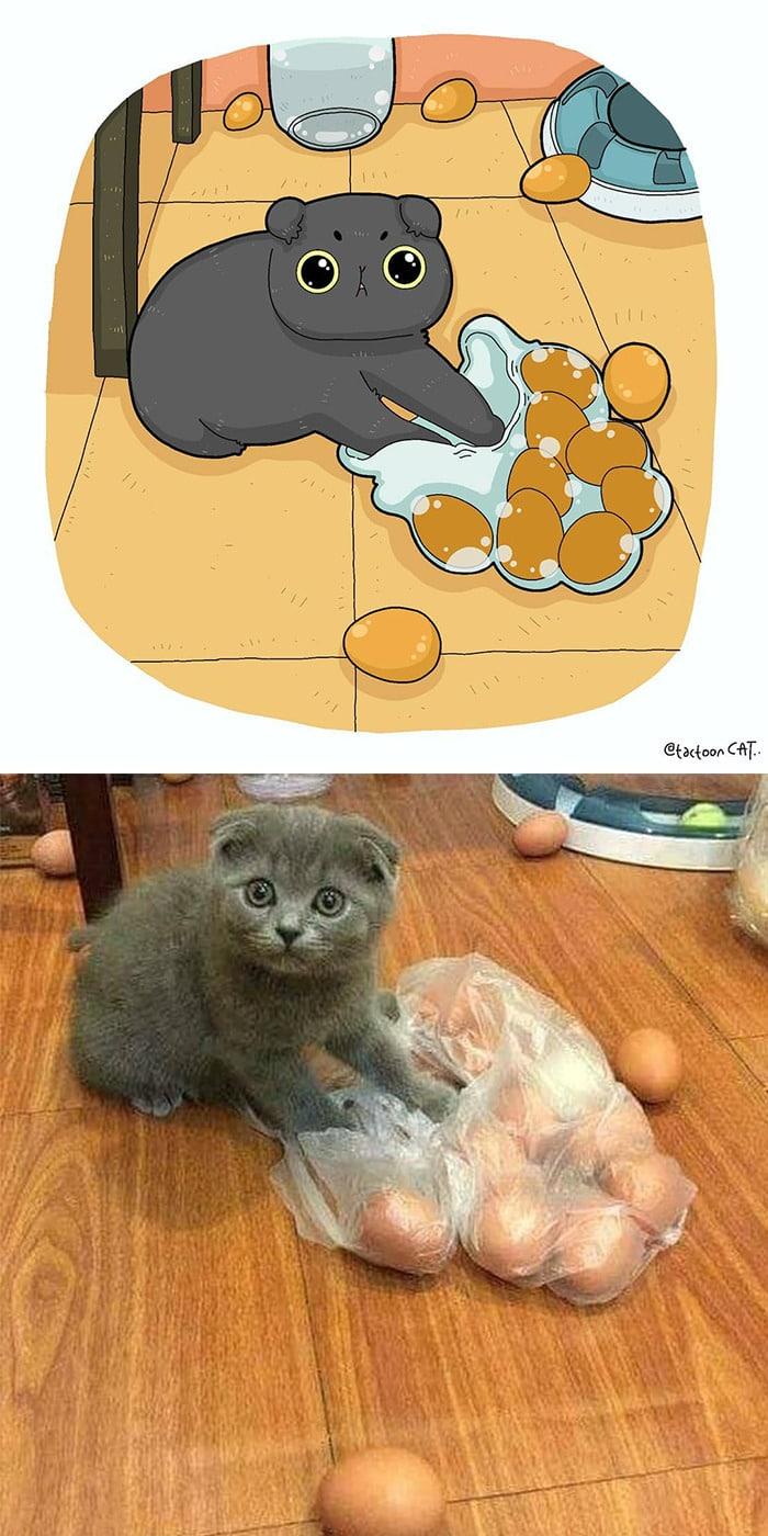 38 fotos de gatos mais engraçadas e famosas da Internet são ilustradas pela Tactooncat 7
