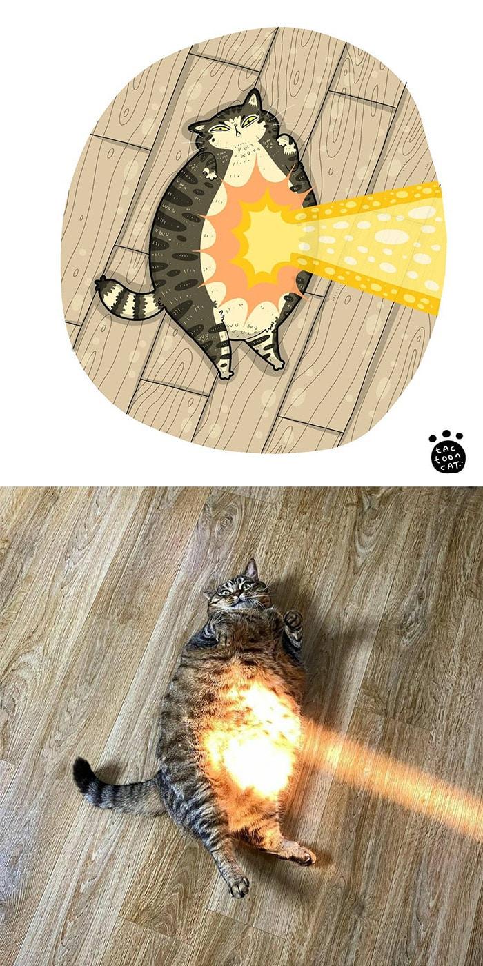 38 fotos de gatos mais engraçadas e famosas da Internet são ilustradas pela Tactooncat 9
