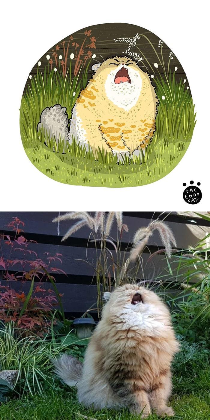 38 fotos de gatos mais engraçadas e famosas da Internet são ilustradas pela Tactooncat 16
