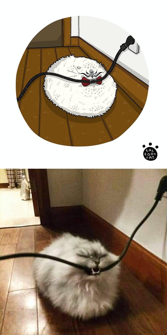38 fotos de gatos mais engraçadas e famosas da Internet são ilustradas pela Tactooncat 17