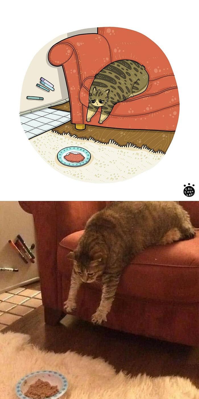 38 fotos de gatos mais engraçadas e famosas da Internet são ilustradas pela Tactooncat 18