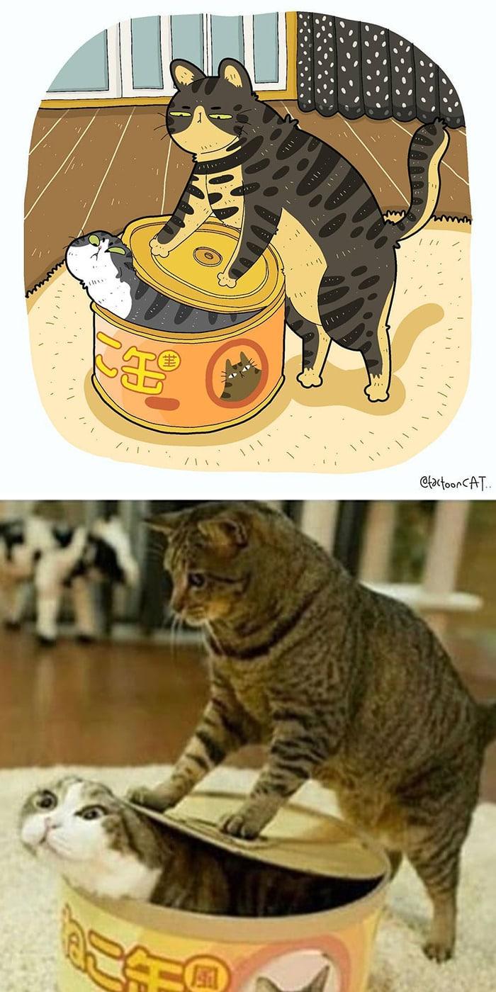 38 fotos de gatos mais engraçadas e famosas da Internet são ilustradas pela Tactooncat 21