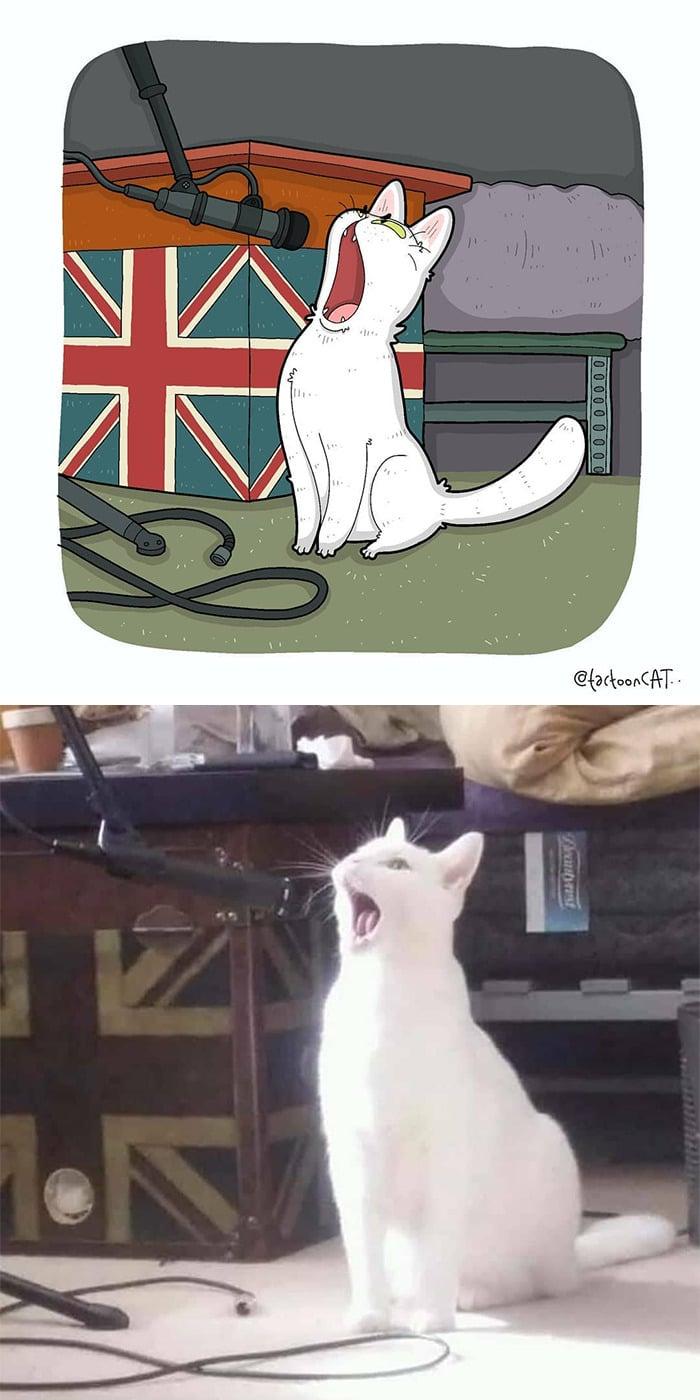38 fotos de gatos mais engraçadas e famosas da Internet são ilustradas pela Tactooncat 22