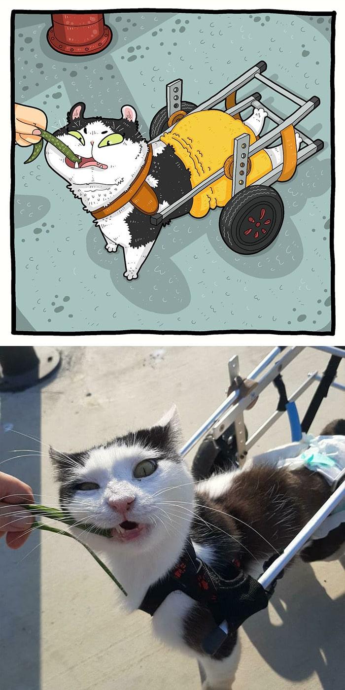 38 fotos de gatos mais engraçadas e famosas da Internet são ilustradas pela Tactooncat 25